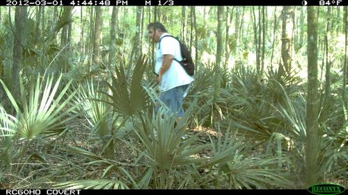 Florida trail cam project