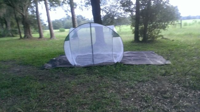 George's cool tent